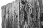 Reclaimed Wood Eg